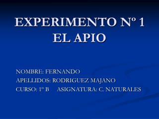 EXPERIMENTO N  1 EL APIO