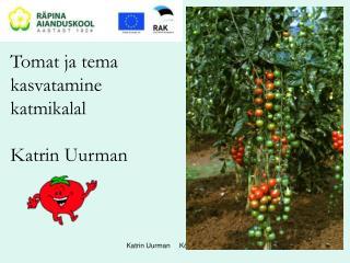 Tomat ja tema  kasvatamine  katmikalal  Katrin Uurman