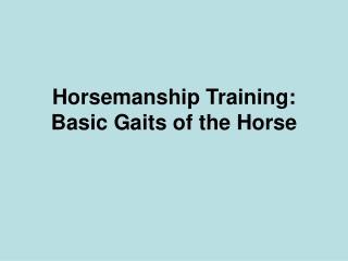 Horsemanship Training: Basic Gaits of the Horse