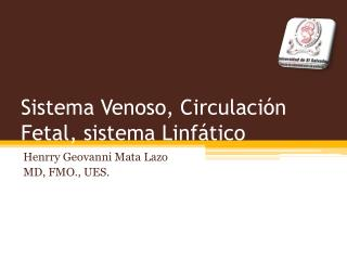 Sistema Venoso, Circulaci n Fetal, sistema Linf tico
