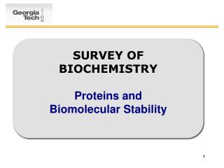 SURVEY OF BIOCHEMISTRY  Proteins and  Biomolecular Stability