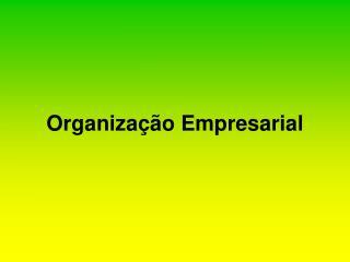Organiza  o Empresarial