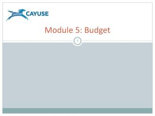 Module 5: Budget