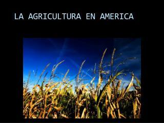 LA AGRICULTURA EN AMERICA