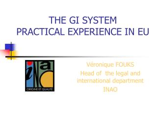 THE GI SYSTEM PRACTICAL EXPERIENCE IN EU