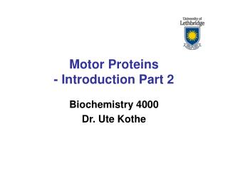 Motor Proteins - Introduction Part 2