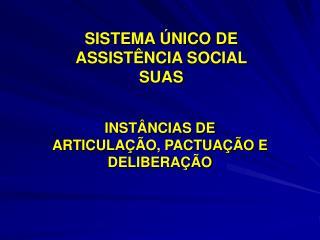 SISTEMA  NICO DE ASSIST NCIA SOCIAL  SUAS