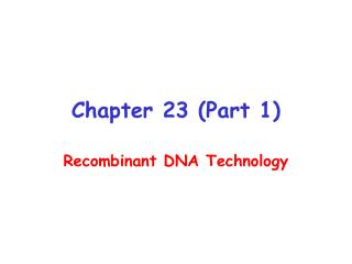 Chapter 23 Part 1