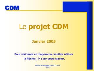 Le projet CDM  Janvier 2005