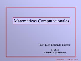 Prof. Luis Eduardo Falc n