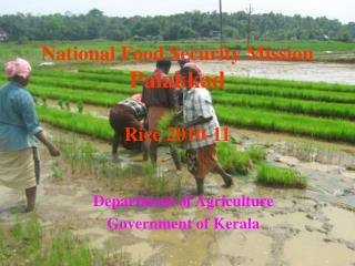 National Food Security Mission Palakkad