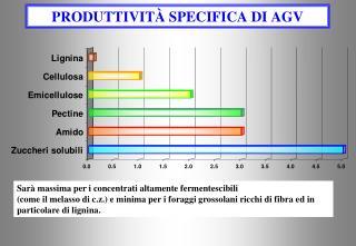 PRODUTTIVIT  SPECIFICA DI AGV