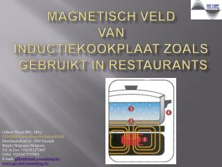 Magnetisch veld  van  inductiekookplaat ZOALS  GEBRUIKT IN RESTAURANTS