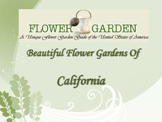 Beautiful Flower Gardens of California