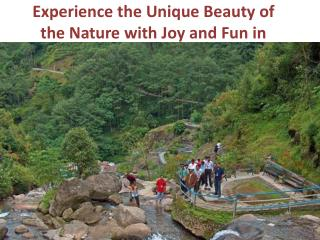 Experience the Unique Beauty of the Nature with Joy and Fun