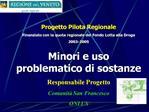 Progetto Pilota Regionale   Finanziato con la quota regionale del Fondo Lotta alla Droga  2003-2005 Minori e uso problem