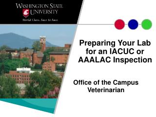 Preparing Your Lab for an IACUC or AAALAC Inspection