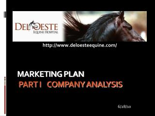 MARKETING PLAN  PART I    COMPANY ANALYSIS