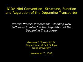 NIDA Mini Convention: Structure