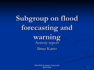 Subgroup on flood forecasting and warning