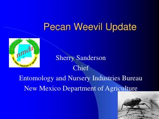 Pecan Weevil Update