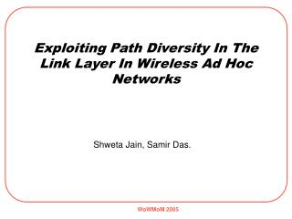 Exploiting Path Diversity In The Link Layer In Wireless Ad Hoc Networks