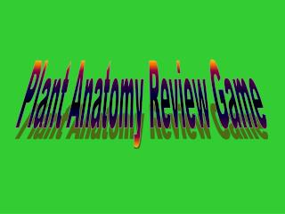 Plant Anatomy Review Game