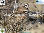 Wildlife Management Planning