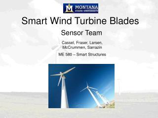 Smart Wind Turbine Blades