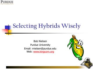 Selecting Hybrids Wisely