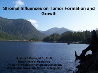 Stromal Influences on Tumor Formation and Growth