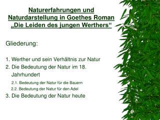 Naturerfahrungen und Naturdarstellung in Goethes Roman  Die Leiden des jungen Werthers