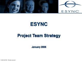 ESYNC   Project Team Strategy   January 2005