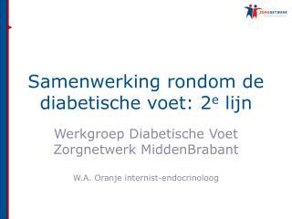 Samenwerking rondom de diabetische voet: 2e lijn
