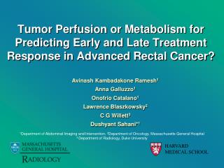 Tumor Perfusion or Metabolism for Predicting Early and Late Treatment Response in Advanced Rectal Cancer