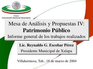 Mesa de An lisis y Propuestas IV: Patrimonio P blico Informe general de los trabajos realizados