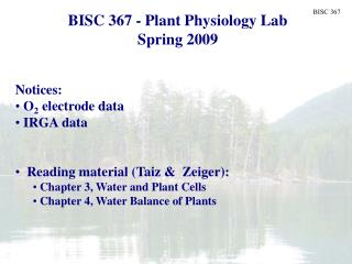 BISC 367