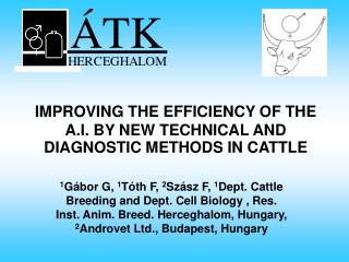 IMPROVING THE EFFICIENCY OF THE A.I. BY NEW TECHNICAL AND DIAGNOSTIC METHODS IN CATTLE