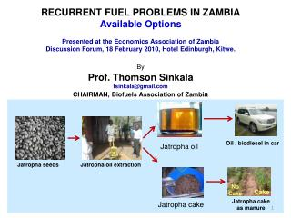 RECURRENT FUEL PROBLEMS IN ZAMBIA  Available Options  Presented at the Economics Association of Zambia  Discussion Forum