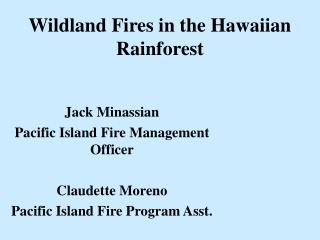 Wildland Fires in the Hawaiian Rainforest
