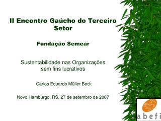 II Encontro Ga cho do Terceiro Setor   Funda  o Semear   Sustentabilidade nas Organiza  es  sem fins lucrativos   Carlos