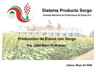 Producci n de Etanol con Sorgo