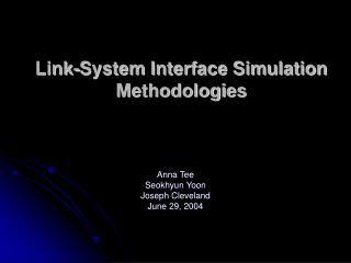 Link-System Interface Simulation Methodologies