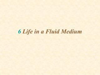 6 Life in a Fluid Medium