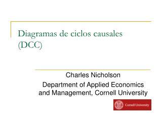 Diagramas de ciclos causales DCC