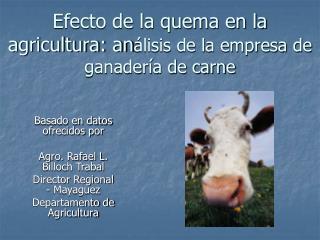 Efecto de la quema en la agricultura: an lisis de la empresa de ganader a de carne