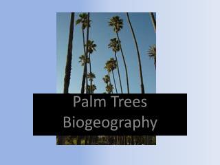 Palm Trees Biogeography