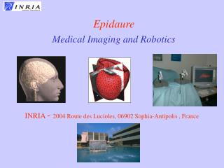 Epidaure   Medical Imaging and Robotics