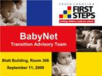 BabyNet  Transition Advisory Team