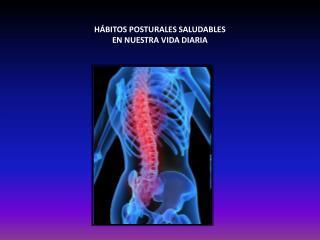H BITOS POSTURALES SALUDABLES  EN NUESTRA VIDA DIARIA